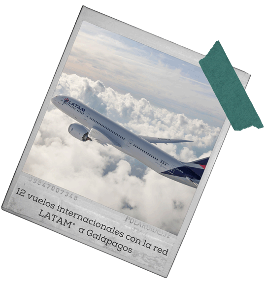 vuelo a galapagos