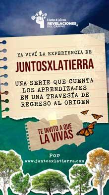 JuntosXLaTierra Arte 7